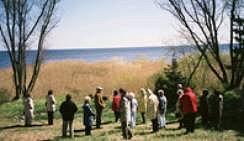 Peipsijärvi
